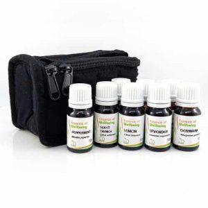 Aromatherapy Travel Bag Kit